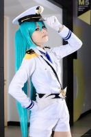 Miku: Fly High by serorima