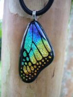 Bright Rainbow Glass Wing by FusedElegance