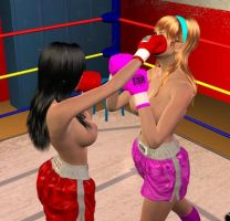 Nicole vs Lilly 004 by chuy9502