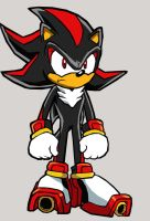 Shadow The Hedgehog by Fibz