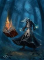 Dark Elf The Warlock by IcedWingsArt