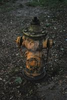 Dirty hydrant by heartsofalice