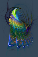 Plumage by TomWilcox
