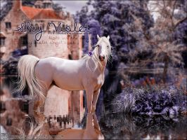 Shy Violet, for Lluvia by Fera1029