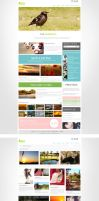 Camera photography network simple web site promoti by lidingling