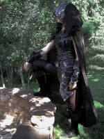Surveying My Work--Skyrim Cosplay by audrey-vista