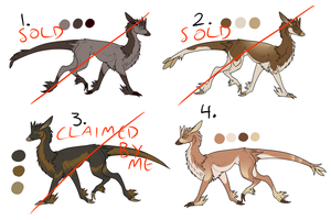 Adesola point adopts by Hazelthedragoness