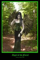 Angel of the Forest by vaia