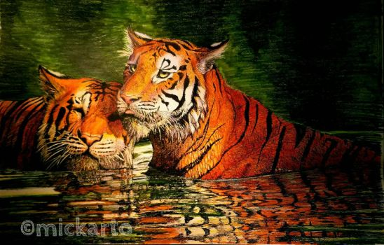 Two Tigers by mickleo