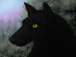 :Gift: TheWinterRaven - Shadow (animation) by TheFailedDream