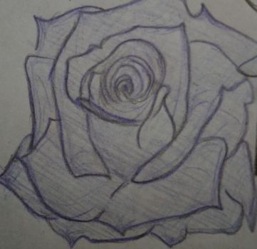 Purple Rose Pic (Gift) by SingWing7
