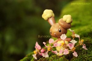 Poke-Shoot : Buneary by MayaIdanan