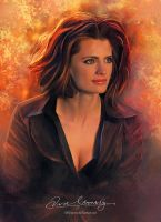 Stana Katic - Heat News Magazine France issue #4 by Amro0