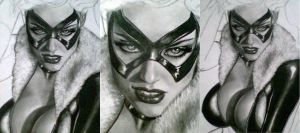 the black cat WIP 2 by aramismarron