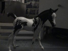 Custom Breyer 2 by barbarolover