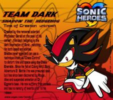 Shadow the Hedgehog profile by 8Horns