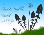Grass and Dandelion Brushes by bellapester