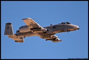 Nellis A-10 Warthog by AirshowDave