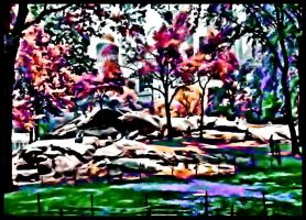 Color My World Central Park by Roxsana2012