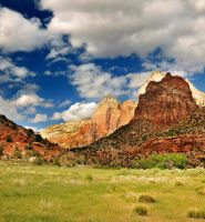 Cliffs in Zion and Meadow fore by houstonryan