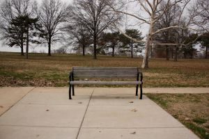bench 4 by pattysmear