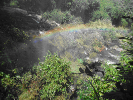 Rainbow on the Ravine by PurpleWillowTrees