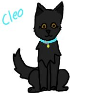 Cleo Fanart  for ashbreeze by Who-Butt