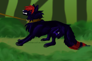 I cant be tamed by KimmenWolf