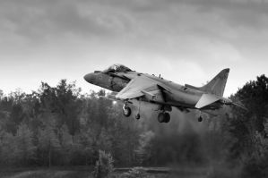 Harrier - Into The Storm by aviationbuff