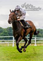 Horse Racing 603 by JullelinPhotography