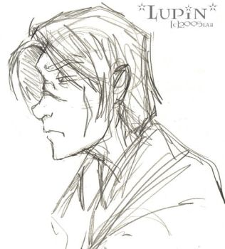 Lupin Redesign - HP by lberghol