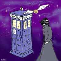 Harry Potter and the Consulting Time Lord by PinkTribble