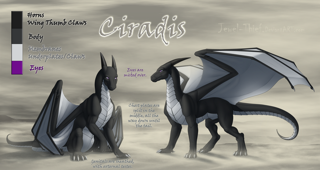 C - Reference - Ciradis by Jewel-Thief