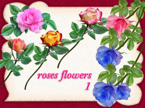 aA roses-1 by roula33
