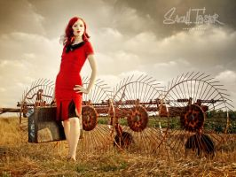 Field No 1 by snottling1
