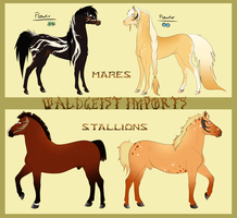 Waldgeist Adopts (Points Only) -  CLOSED by Drasayer