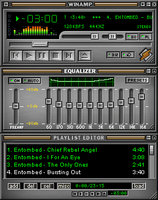 Almost Winamp 3 by firelight