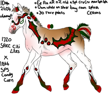 2404 Padro Foal Design by The-Elvenqueen