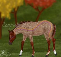 2840 TWF Assassin's Blade (foal ref) by MissStylish