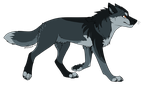 Wolf adopt 1 closed by ThreesomeAdopts