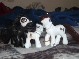 Phantom My Little Pony Customs by loverofbalto