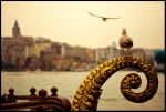golden horn by globalunion