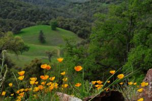 Down in my valley by kayaksailor