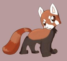 A Red Panda by Nine-doodles