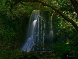 Matai Falls by vladstudio