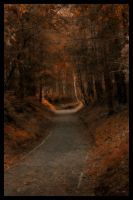 Autumn by roxiannie