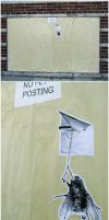 Flyposting by ThePopeGFX