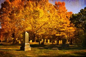 Autumn in South Cemetery by muffet1