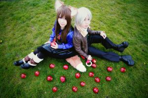Spice and Wolf V by kaworu0926