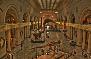 Field Museum by Adrant
